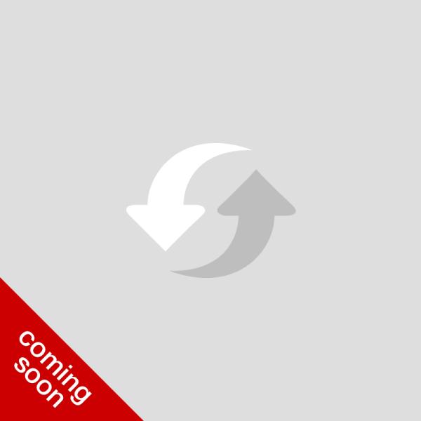 Wordpress Rentals plugin - coming soon